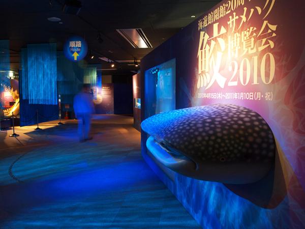水族館 鮫博覧会